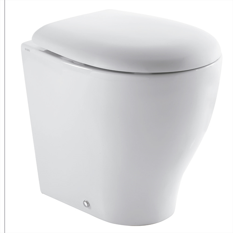 BOWL+ 50.38 WC A TERRA SCARICO A PARETE codice prod: BP002BI product photo