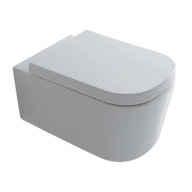 MEG11 WC 35X55 SOSPESO BIANCO codice prod: 5411 product photo