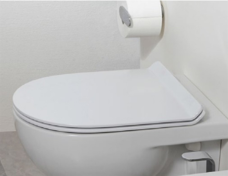 Sedili Wc Per Disabili : Sedili wc prodotti prezzi e offerte desivero